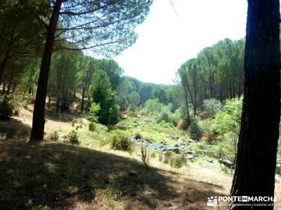 Puentes romanos Valle del Tiétar; rutas senderismo madrid;viajes agosto;excursiones organizadas des
